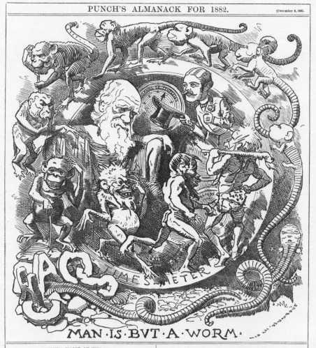 darwin-worm