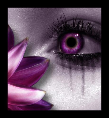 ojo-flor2