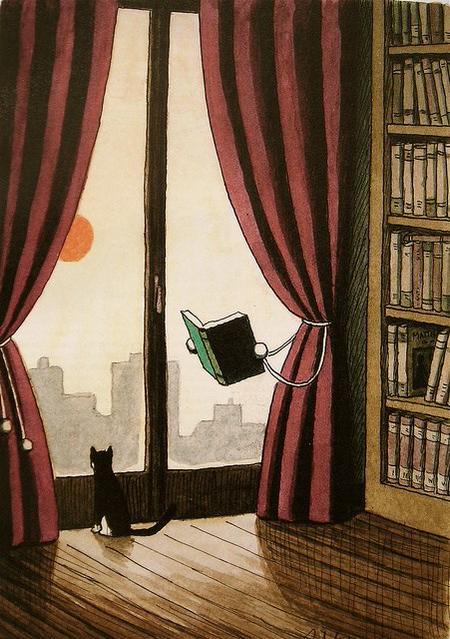 lectura.gato